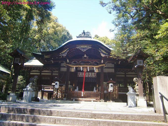 岡崎神社狛ウサギR