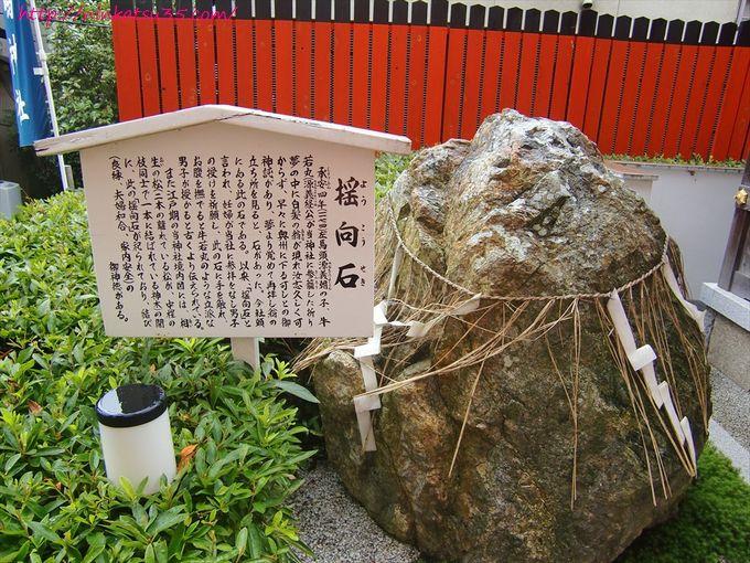 京都三嶋神社揺向石